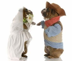 Hochzeitsstreiche vor der Hochzeitsnacht zählen zu den beliebten Hochzeitsbräuchen