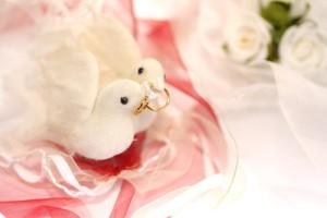 Es ist sehr romantisch wenn Tauben bei der Hochzeit in die Freiheit entlassen werden