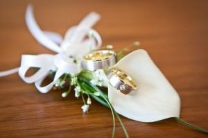 Die Hochzeitsversicherung wird von unterschiedlichen Versicherungsträgern angeboten